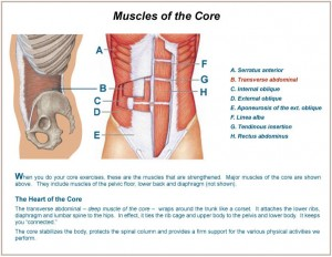 The Benefits of Strong Core Muscles